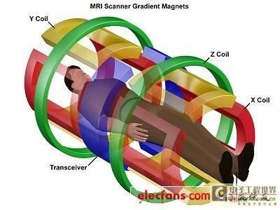 病人与MRI线圈的位置关系